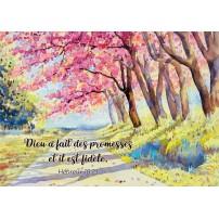 Carte postale - Peinture d'un chemin sous les arbres en fleur