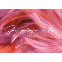 """Carte postale - Série """"Plume"""" - fond rose"""