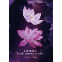 Carte postale - Nénuphars sur fond violet