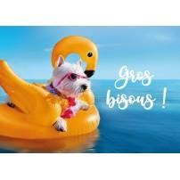 Carte postale - Petit chien blanc sur une bouée sur l'eau
