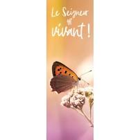 Signet - Papillon sur fond orange