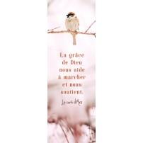 SIGNET : Oiseau sur une branche en hiver