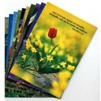 Lots cartes postales fleurs