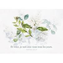 CARTE VB : Fleurs blanches et feuilles sur fond blanc