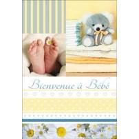 CARNET HE : Pieds bébé paquerette et ourson bleu
