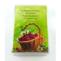 Lot 100 Mini-cartes VB : Dieu est mon secours
