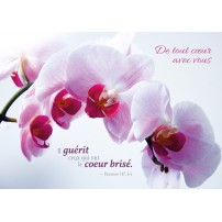 CARTE VB : Fleurs blanches et roses