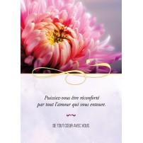 CARTE PENSEE : Chrysanthème rose (De tout coeur..)