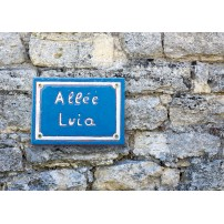 CARTE ST : Plaque de rue Allée Luia