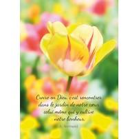 CARTE PENSEE : Fleur jaune dans un jardin