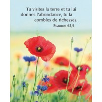 POSTER : Coquelicots