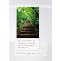 CARNET SC : Escalier montant dans la forêt