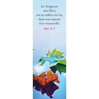 SIGNET : Feuilles posées sur l'eau