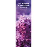 SIGNET : Fleurs violettes