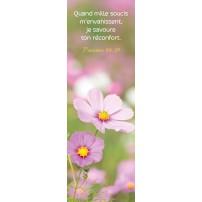 SIGNET : Fleurs roses dans un pré