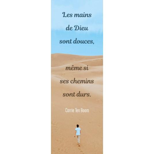 Signet Personne marchant dans le désert