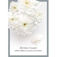 CARTE FLASH : Bouquet de fleurs blanches