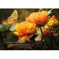 CARTE VB : Papillon et fleurs jaunes