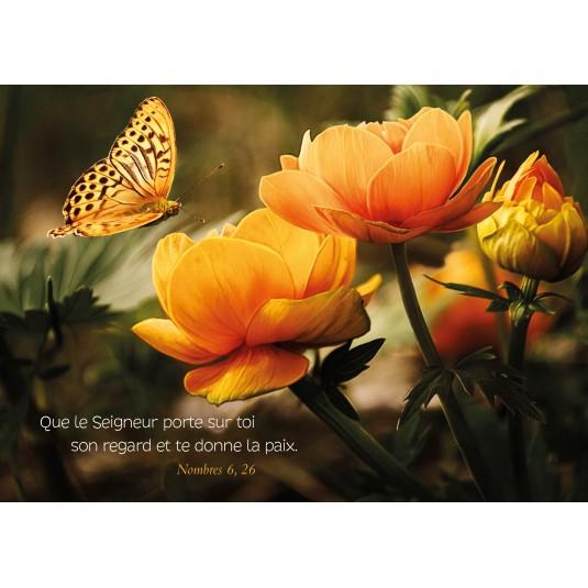 Carte Avec Verset Papillon et fleurs jaunes