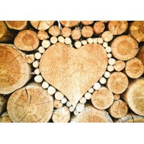 CARTE ST : Coeur dans des rondins de bois