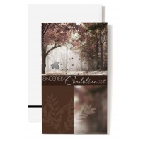 CARNET SC :forêt en automne