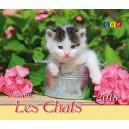 CAL.GBK 2018 Nos amis les chats Petit Format
