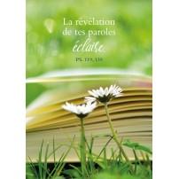 CARTE VB : Marguerites devant un livre posé dans l'herbe