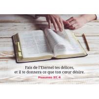 CARTE VB : Personne en train de lire une Bible d'étude