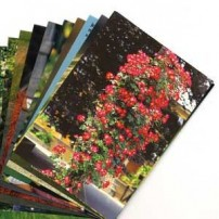 LOT 2 Cartes Postales Sans Texte