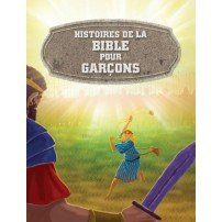 Histoires de la Bible pour garçons