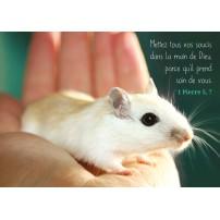 Carte Avec Verset Une souris dans une main