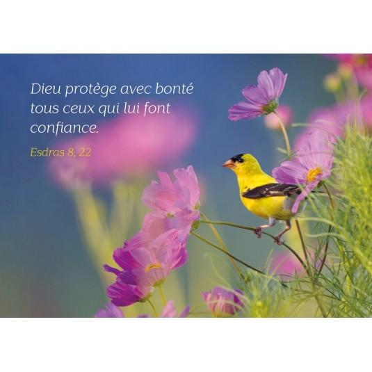 Carte Avec Verset Oiseau jaune posé sur une fleur