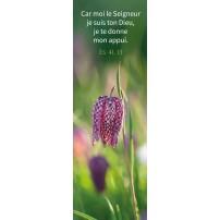 Signet Fleur à damier blanche et violette