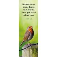 Signet Moineau posé sur un poteau en bois