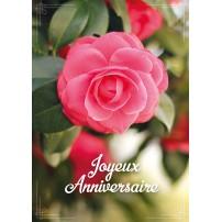 Carte Avec Message Gros plan sur une rose sur un bouquet(JA)