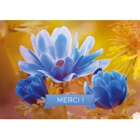 Carte Avec Message Fleur bleue sur fond orange(Merci)