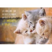 Carte Avec Message Trois chatons se font un calin