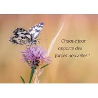 Carte Avec Message Papillon posé sur une fleur violette