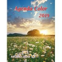CAL. 2019 Agenda Color