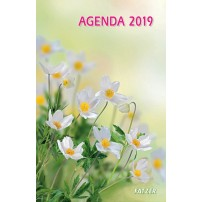 CAL. 2019 Agenda international