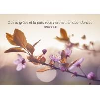 Carte avec des fleurs violettes sur une branche