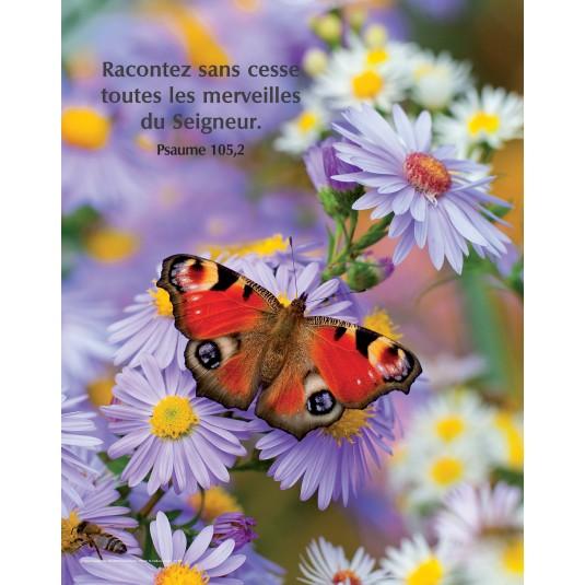 Poster Papillon sur fleurs mauve