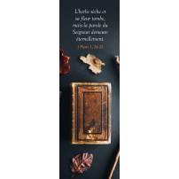 Signet Bible sur une table et feuilles mortes