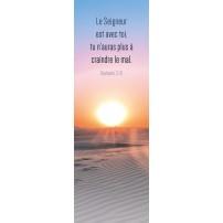Signet Coucher de soleil sur le désert