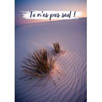Carte Avec Message Plantes dans le désert au lever du soleil