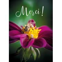 Carte Avec Message Abeille sur une fleur violette