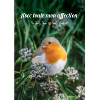 Carte Avec Message Oiseau sur buisson