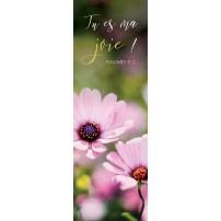 Signet Fleurs de cosmos dans un jardin