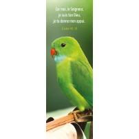 Signet Perruche verte sur une branche