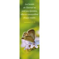 Signet Papillon posé sur des fleurs parmes